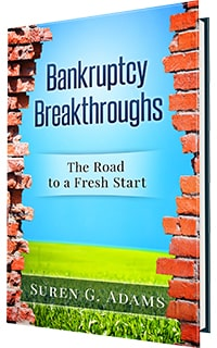 Book about bankruptcy